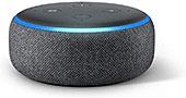 <Echo Dot>