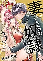 <妻という名の奴隷(どうぐ)になって【電子単行本】 3 (プリンセス・コミックス プチプリ)>