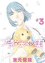 <プラタナスの実(3) (ビッグコミックス)>